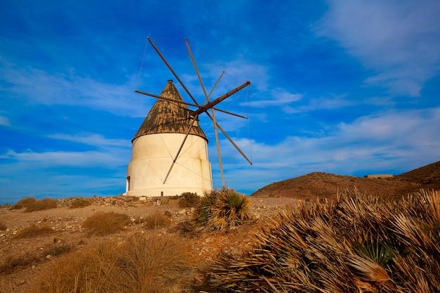 Almeria molino de los genoveses windmühle spanien