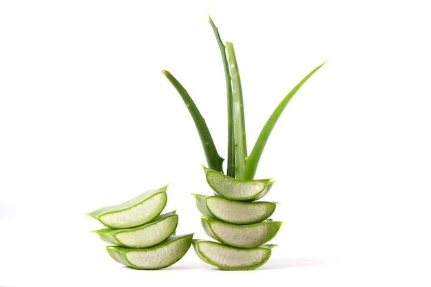 Aloe vera auf weißem hintergrund natürliche pflegeprodukte feuchtigkeitsspendend und hautpflegend