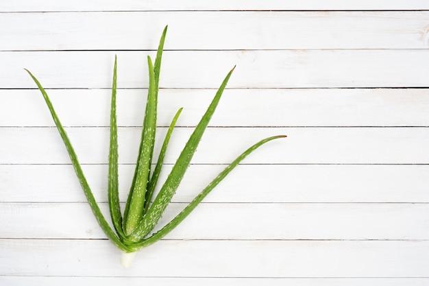 Aloe vera auf weißem hölzernem schreibtisch mit kopienraum, draufsicht.
