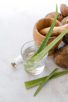 Aloe vera blätter in einem glas und kokosnuss