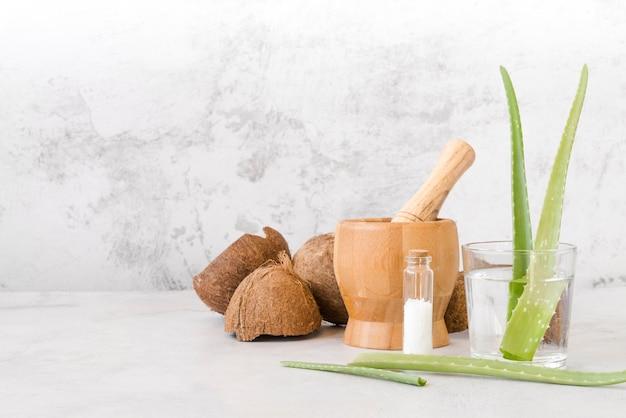 Aloe vera blätter in einer glas- und kokosnuss-vorderansicht