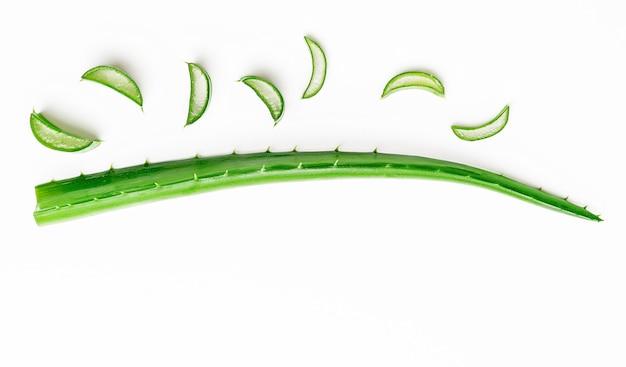 Aloe vera blatt mit geschnittenen scheiben auf weißem hintergrund. kopierraum, flach liegen. medizin-konzept