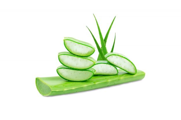 Aloe vera frisch isoliert auf weißem hintergrund