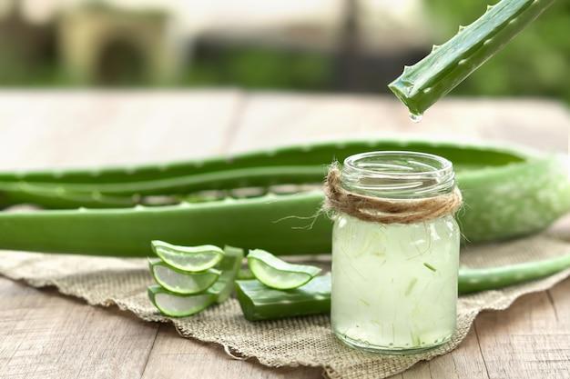 Aloe vera ist ein sehr nützliches kräutermedikament zur behandlung der haut und zur verwendung im spa zur hautpflege. kraut in der natur