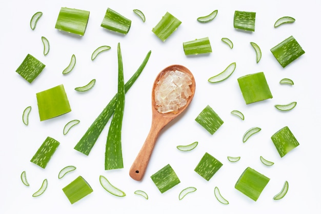 Aloe vera ist eine beliebte heilpflanze für gesundheit und schönheit, auf einem weißen.