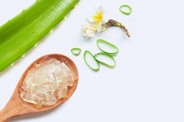 Aloe vera ist eine beliebte heilpflanze für gesundheit und schönheit, weißer hintergrund.