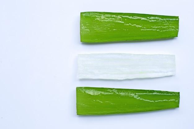 Aloe vera ist eine beliebte heilpflanze