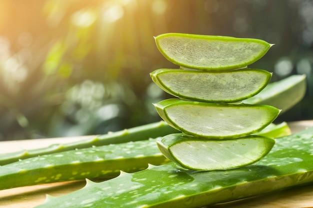 Aloe vera scheibe auf dem bauernhof Premium Fotos