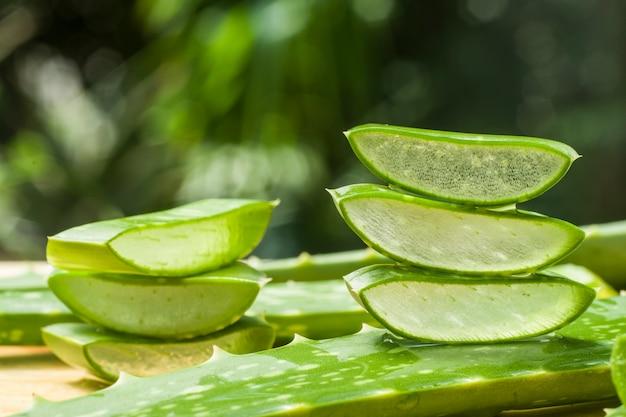 Aloe vera scheibe auf dem bauernhof