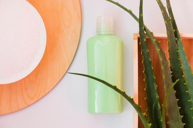 Aloe vera verlässt mit einer schönheitscremeflasche