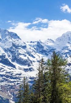Alpine berge