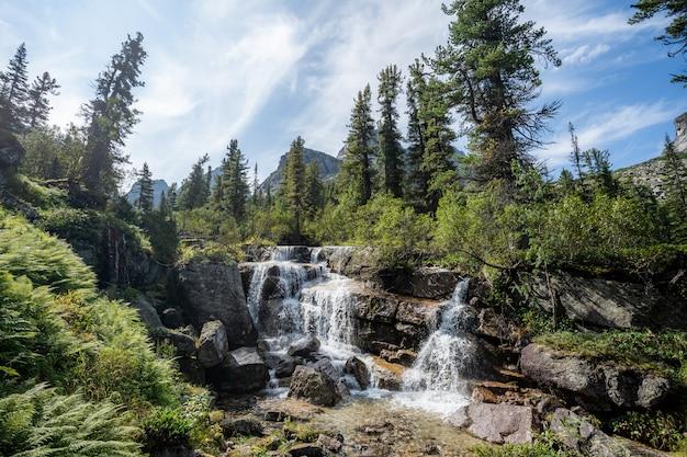 Alpiner wasserfall im gebirgswald unter blauem himmel.