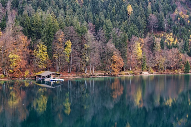 Alpsee in bayern mit reflexion von bunten bäumen im herbst