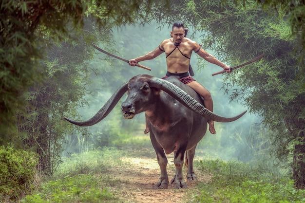Als thailändischer krieger in ayutthaya-tracht hat er doppelschwerter und reitet auf dem langen hornbüffel.