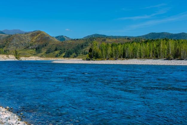 Altai-landschaft mit gebirgsfluss katun und grünen hügeln, sibirien, altai-republik