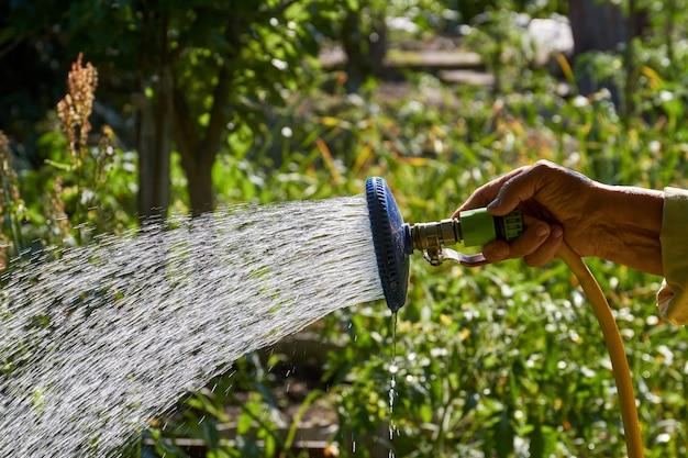 Alte ältere dame hand mit sprinkler, die ihren garten bewässert