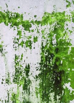 Alte betonmauer befleckt mit grüner farbe. designbeschaffenheit für hausinnenraum oder -tapeten.