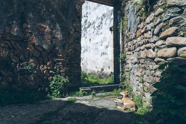 Alte chinesische architektur und steinmauer