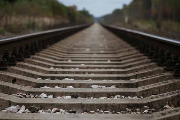 Alte eisenbahn im wald am bewölkten herbst