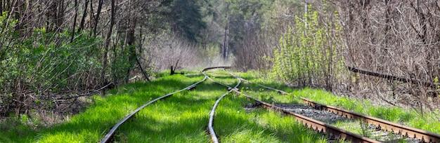 Alte eisenbahnschienen mit gras bewachsen