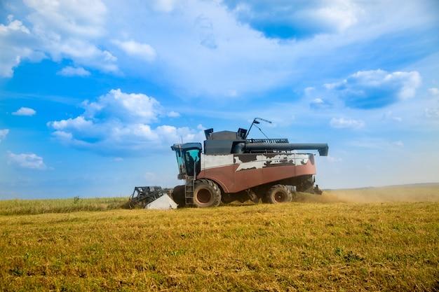 Alte erntemaschine pflügt das feld. erntemaschine erntet weizen von einem gesäten landwirtschaftlichen feld sommertag