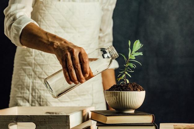 Alte frau, die eine wachsende pflanze über einem stapel bücher, persönliches wachsendes konzept, kopierraum wässert