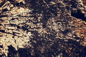 Alte gebrochene hölzerne Stumpf-Bauholz-Beschaffenheit