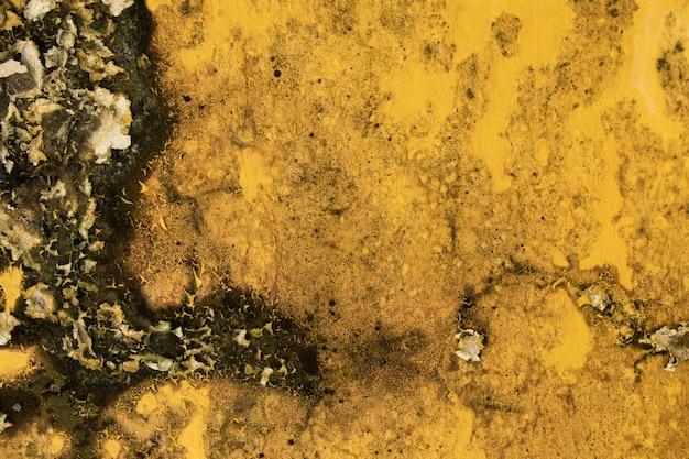 Alte gelbe wandbeschaffenheit mit schimmel und peeling.