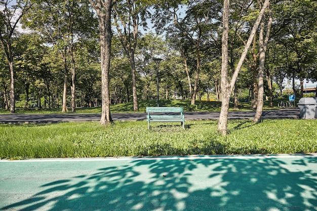 Alte grüne bank auf der rasenfläche im garten mit radweg
