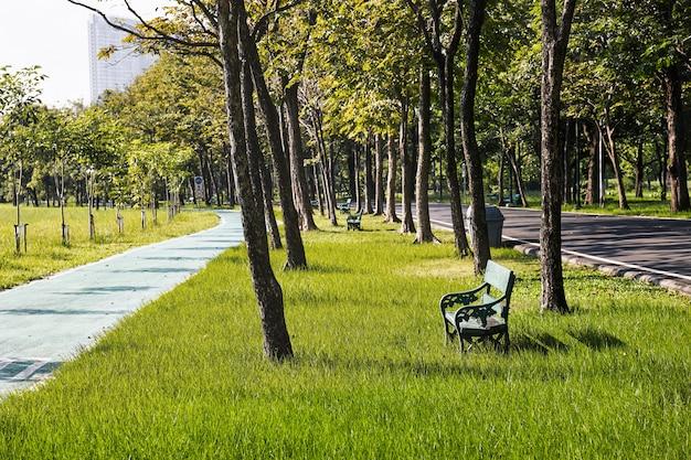 Alte grüne bank auf der rasenfläche im park mit radweg. freizeit, lifestyle-konzept.