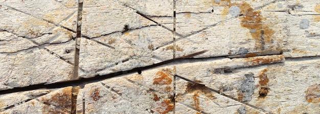 Alte holzbeschaffenheit, alter hölzerner hintergrund mit einem weinlesestrukturbanner