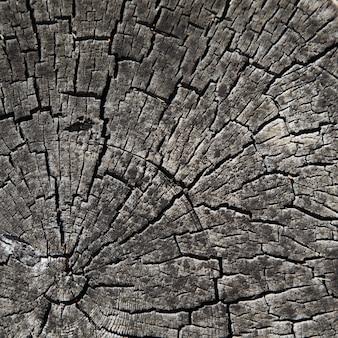 Alte holzbeschaffenheit, natürlicher hintergrund