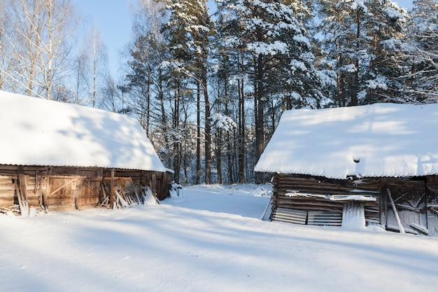 Alte holzgebäude im wald in der wintersaison. auf der oberfläche von gebäuden und dem boden liegt schnee