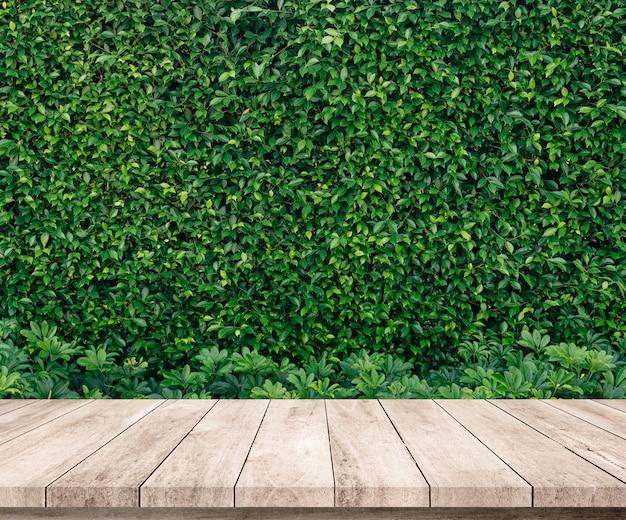Alte holzplanke mit abstraktem natürlichem grünem blatthintergrund für produktanzeige