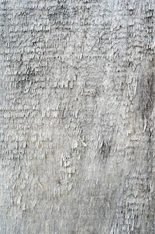 Alte holzplatte innentextur verwitterte graue rohe holzbretter hintergrundmakroansicht mit textur