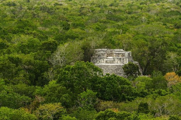 Alte maya-pyramide im grünen dschungel