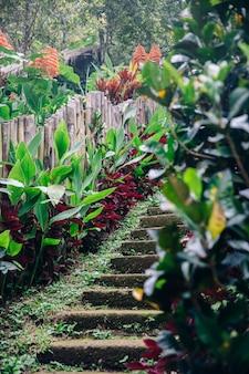 Alte steinige treppe am gitgit-wasserfall auf bali-insel, indonesien