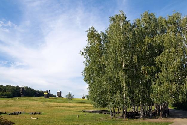 Alte veraltete windmühlen jenseits der baumplantage auf dem feld