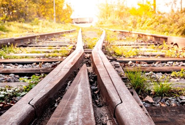 Alte verlassene eisenbahn mit rostigen schienen im sommer bei sonnenuntergang.