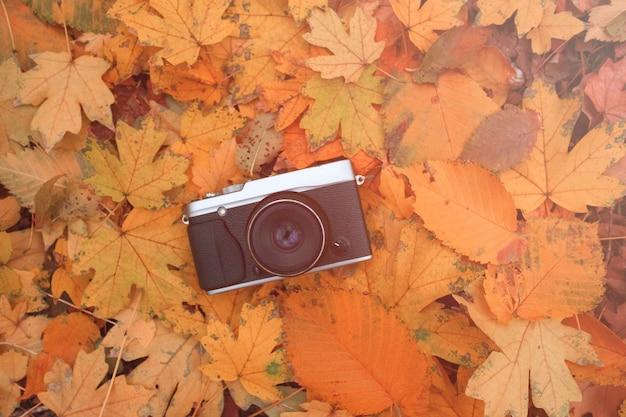 Alte weinlesekamera mit körnigem foto-herbstlaub-lichtleck der linse