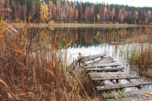 Alter holzsteg mit herbstlaub am waldsee platz zum entspannen und meditieren herbstzeit