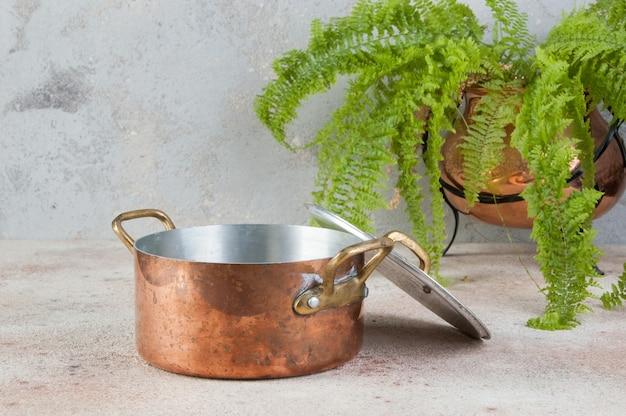 Alter kupferauflauf mit deckel und messinggriffen und grüner pflanze im kupferblumentopf auf einem betontisch.