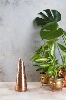 Alter kupferner krug und grünpflanzen