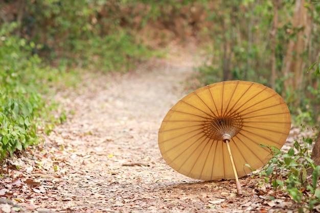 Alter regenschirm in den naturgrünbäumen