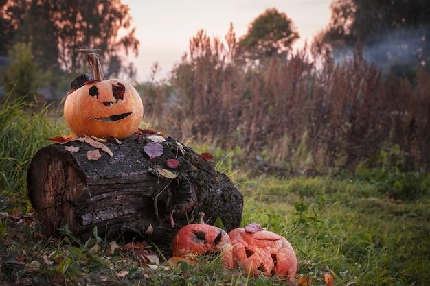 Alter verwöhnter halloween-kürbis im freien