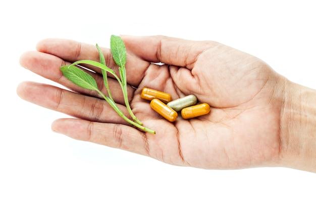 Alternative gesundheitsversorgung und kräutermedizin.