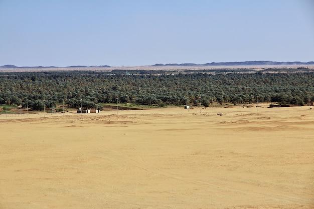 Altertümliche pyramiden in jebel barkal, sudan