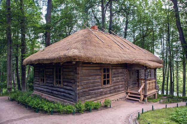 Altes blockhaus mit einem fenster, im sommer von bäumen umgeben