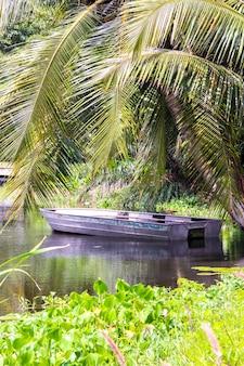 Altes boot unter einer palme auf dem see