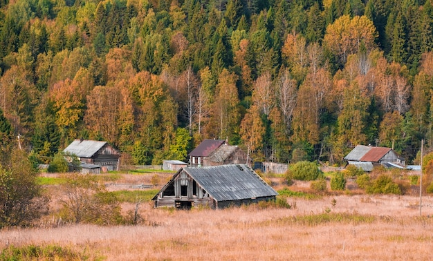 Altes dorf mit holzhäusern nahe dem herbstwald im vepsky-wald, leningrader region russland